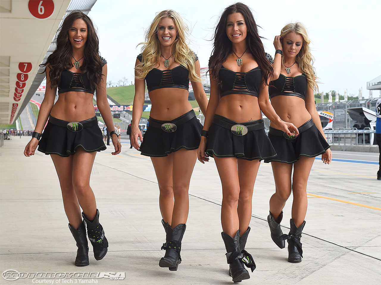 Sexy Grid girls are hot sports babes because they're sexy as